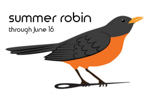 Summer Robin Stitch Along
