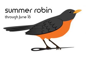 Summer Robin Stitch Along